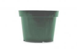 "10"" Azalea - Green"