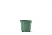 """4.5"""" Round Geranium - Green"""