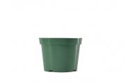 "6.5"" Azalea - Green"