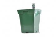 Jumbo Senior - Green